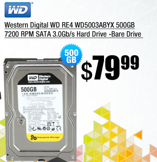 Western Digital WD RE4 WD5003ABYX 500GB 7200 RPM SATA 3.0Gb/s Hard Drive -Bare Drive