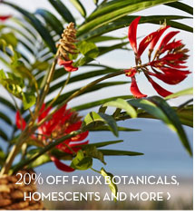 20% OFF FAUX BOTANICALS, HOMESCENTS AND MORE