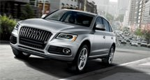 Explore the distinct Audi Q5