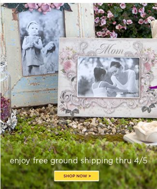 Select Mother's Day Gifts 20% Off  PLUS Free Ground Shipping* - no minimum  Use code SHIPPING to redeem.   *free ground shipping to U.S. destinations only.