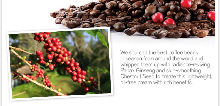 We source the best coffe beans in season from around the world and whipped them up with radiance reviving Panax Ginseng and skin smoothing Chestnut Seed to create this lightweight oil free cream with rich benefits