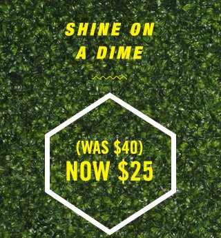 SHINE ON A DIME  (WAS $40) NOW $25  SHOP IT