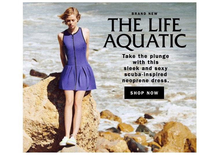 Brand New: The Life Aquatic
