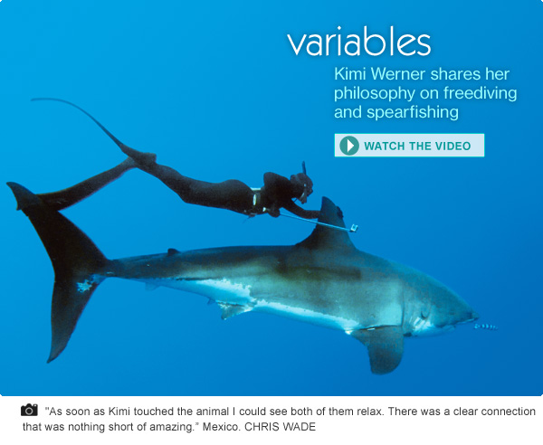 Variables: Kimi Werner shares her philosophy on freediving and spearfishing