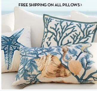 FREE SHIPPING ON ALL PILLOWS