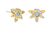 pave stud earrings