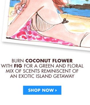 MIX COCONUT FLOWER WITH FIG FOR A GREEN AND FLORAL MIX REMINISCENT OF AN EXOTIC ISLAND GETAWAY. SHOP NOW›