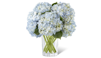 Vera Wang Bouquet Mother's Day