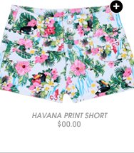 Shop Havana Print High Waist Short