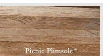 Picnic Plimsole