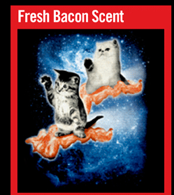 FRESH BACON SCENT