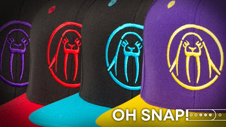 New UP Snapbacks