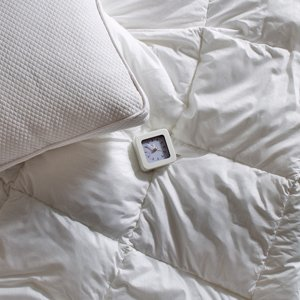 The Down Shop: Comforters & Pillows