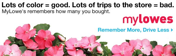 Lots of color = good. Lots of trips to the store = bad. MyLowe's remember how many you bought. myLowes. Remember More, Drive Less