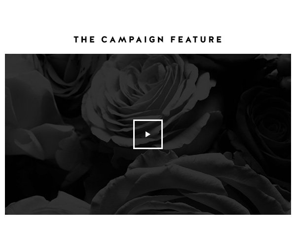 THE CAMPAIGN FEATURE