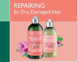 Repairing for Dry, Damaged Hair