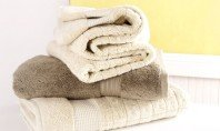 Egyptian Cotton Towels By Kassatex- Visit Event
