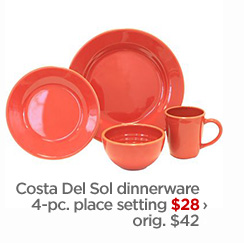Costa Del Sol dinnerware 4–pc. place setting $28 › orig. $42
