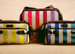 Long Champ & Celine Handbags