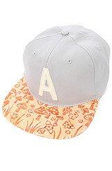 The Fungi Snapback Hat in Grey Heather