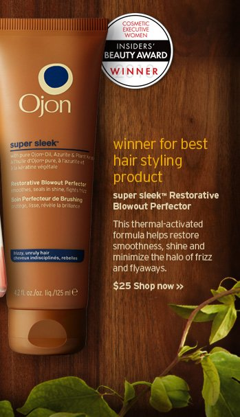 winner for best hair styling product super sleek Restorative  Blowout Perfector This thermal activated formula helps restore  smoothness shine and minimize the halo of frizz and flyaways SHOP NOW