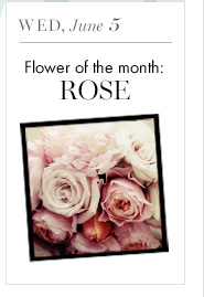 Wed, June 5 Flower of the month: Rose