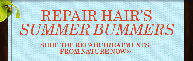 REPAIR HAIRS SUMMER BUMMERS SHOP TOP REPAIR TREATMENTS FROM NATURE  NOW