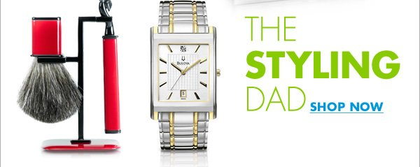 THE STYLING DAD SHOP NOW