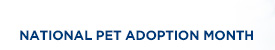 NATIONAL PET ADOPTION MONTH