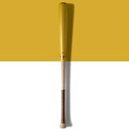 baseball dip dye bat
