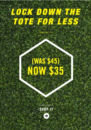 LOCK DOWN THE TOTE FOR LESS (WAS $45) NOW $35