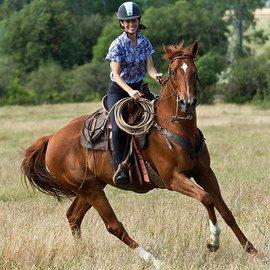 Equestrian Style: Women's Apparel