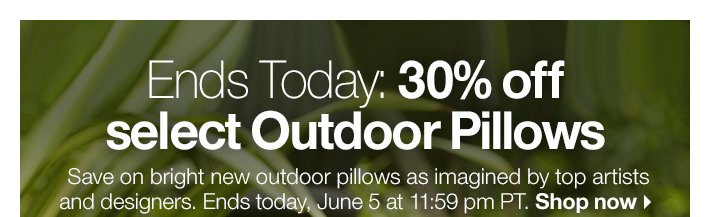 Ends Today: 30% off select Outdoor  Pillows
