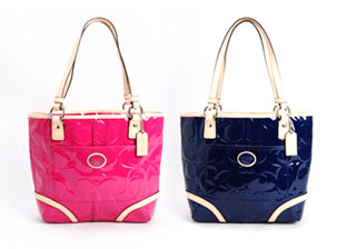 Coach Handbags & Walets