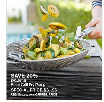 SAVE 20% -- EXCLUSIVE -- Steel Grill Fry Pan, SPECIAL PRICE $31.96 -- REG. $39.95, 20% OFF REG. PRICE