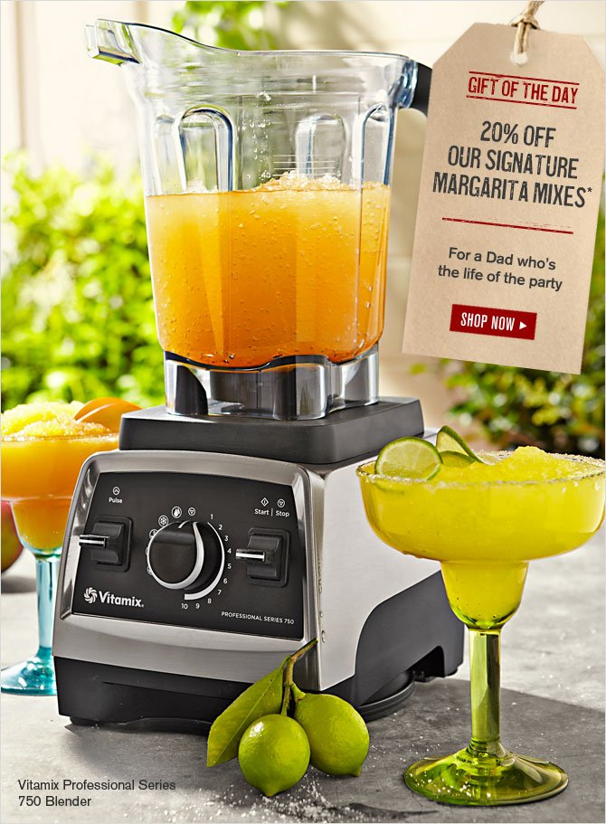 GIFT OF THE DAY - 20% OFF OUR SIGNATURE MARGARITA MIXES* - For a Dad who's the life of the party - SHOP NOW