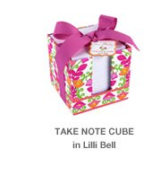 Take Note Cube in Lilli Bell