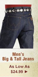 All Mens Big and Tall Jeans on Sale