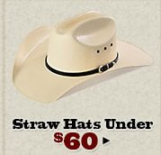 Straw Hats Under 60 on Sale