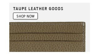 Taupe Leather Goods