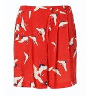 6-Zara-Bird-Shorts-60
