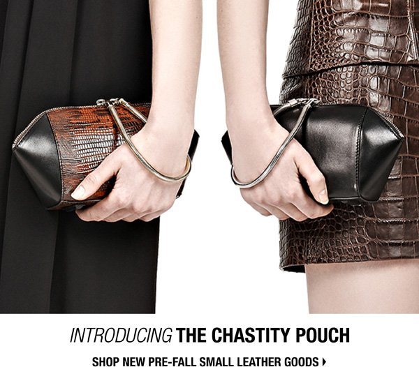 Introducing THE CHASTITY POUCH. Shop new Pre-Fall Small Leather Goods.