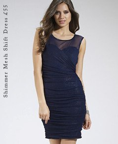 Shimmer Mesh Shift Dress