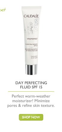 Day Perfecting Fluid SPF 15