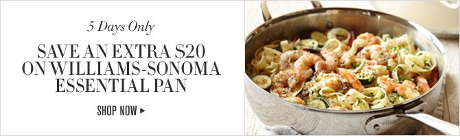 5 Days Only -- SAVE AN EXTRA $20 ON WILLIAMS-SONOMA ESSENTIAL PAN -- SHOP NOW