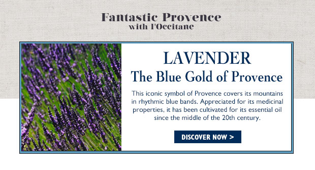 This iconic symbol of Provence covers its mountains in rhythmic blue bands.  Appreciated for its medicinal properties, it has been cultivated for its essential oil since the middle of the 20th century.
