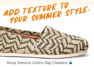 Shop Natural Zebra Zag Classics