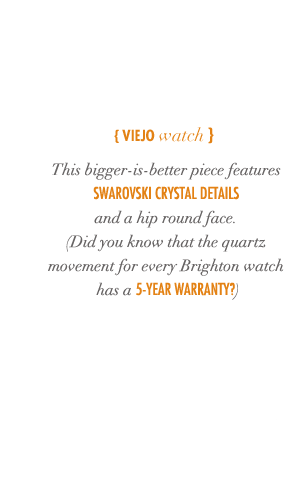 Viejo Watch