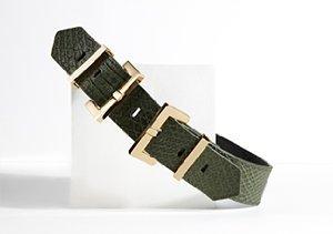 Elegantly Waisted Belts