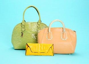 Tiffany & Fred Handbags
